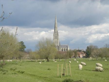 Salisbury Cathedral, across the meadow
