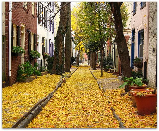 Panama Street, Philadelphia